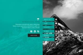 Tetra - Adobe Muse Template